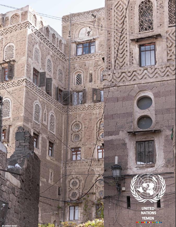 UNCT Annual Report 2020
