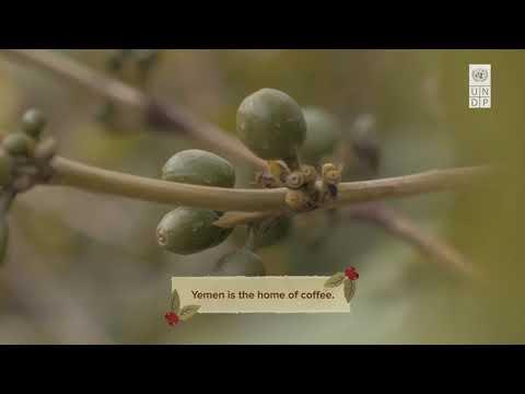 Help us celebrate Yemeni Coffee!
