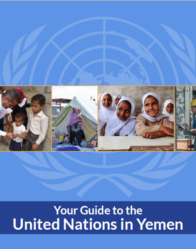 Your Guide to the United Nations in Yemen (2015)